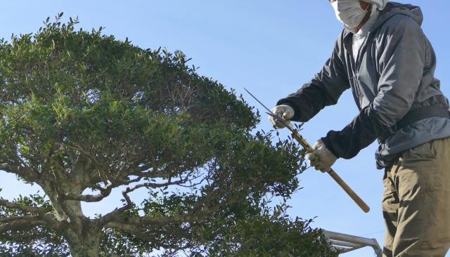 図5 植木職人